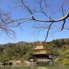 春休み・子連れ京都旅行へ行って来た。(後編)