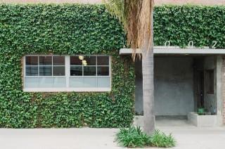 家のメンテナンスに待ったなし?外壁塗装に悩む。